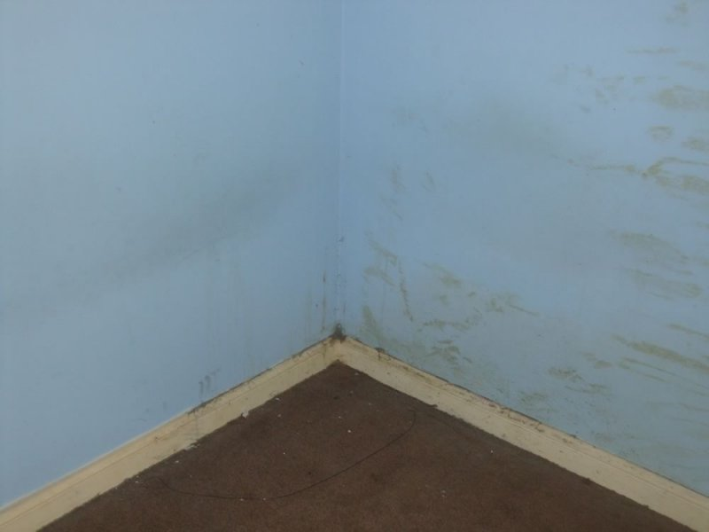 - North Scotland Void Property Cleanup